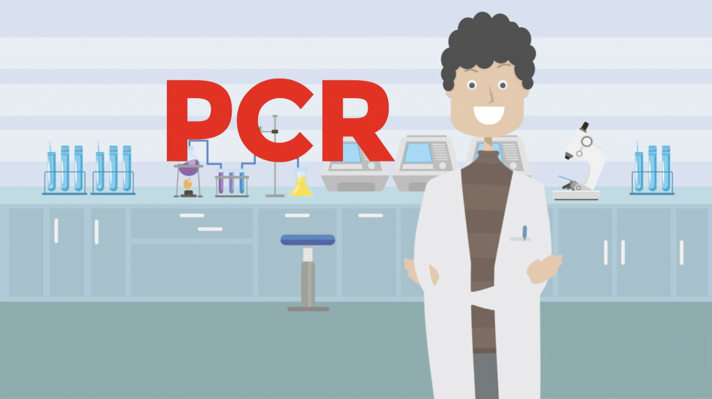 Polymerase Chain Reaction test-PCR